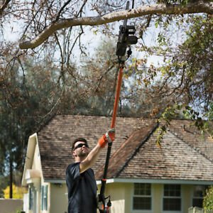 Chainsaw Can Be Used For Gardening